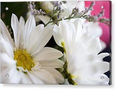 Bouquet Of Daisies Acrylic Print by John Holloway