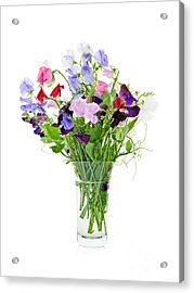 Bouquet Of Sweet Pea Flowers Acrylic Print by Elena Elisseeva