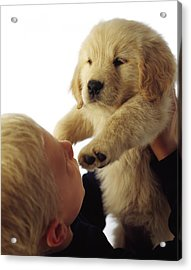 Boy Holding Puppy Up Acrylic Print by Ron Nickel