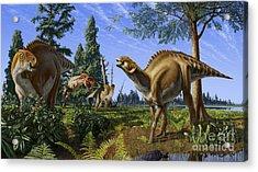 Brachylophosaurus Canadensis Acrylic Print by Julius Csotonyi