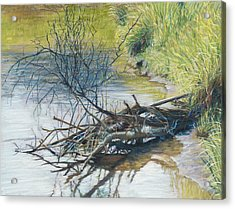 Branches By A River Bank Acrylic Print by Nick Payne