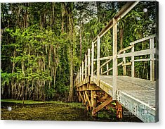 Caddo Lake Bridge Into The Forest Acrylic Print by Tamyra Ayles