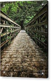 Bridge Leading Into The Bamboo Jungle Acrylic Print by Edward Fielding