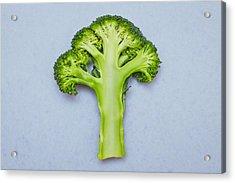 Broccoli Acrylic Print by Tom Gowanlock