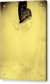 Broken Acrylic Print by Graham Hughes