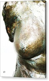 Bronze Bust 1 Acrylic Print by Sharon Cummings