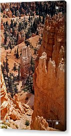 Bryce Canyon National Park 2 Acrylic Print by Thomas Woolworth