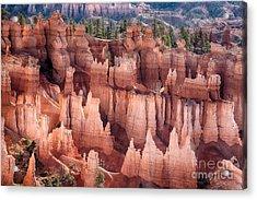 Bryce Canyon Utah Views 92 Acrylic Print by James BO  Insogna