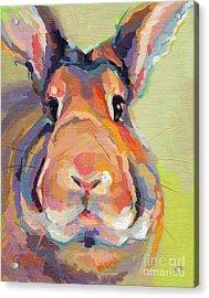 Bubba Omalley Acrylic Print by Kimberly Santini