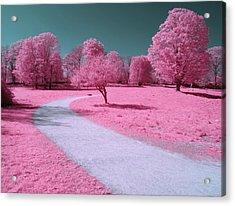 Bubblegum Bliss Acrylic Print by Luke Moore