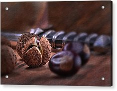 Buckeye Nut Still Life Acrylic Print by Tom Mc Nemar