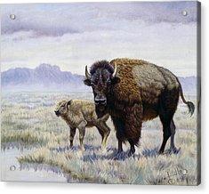 Buffalo Watering Hole Acrylic Print by Gregory Perillo