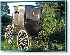 Buggy Acrylic Print by PainterArtist FIN