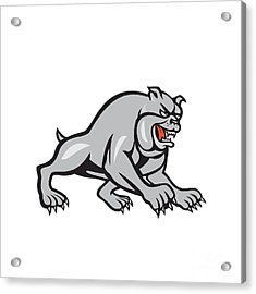 Bulldog Dog Mongrel Prowling Cartoon Acrylic Print by Aloysius Patrimonio
