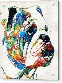 Bulldog Pop Art - How Bout A Kiss - By Sharon Cummings Acrylic Print by Sharon Cummings
