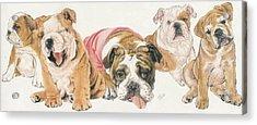 Bulldog Puppies Acrylic Print by Barbara Keith