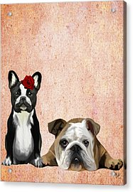 Bulldogs French And English Acrylic Print by Kelly McLaughlan