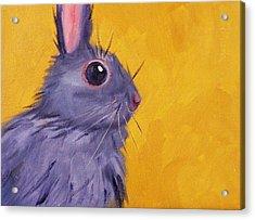 Bunny Acrylic Print by Nancy Merkle