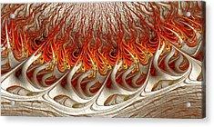 Burning Acrylic Print by Anastasiya Malakhova
