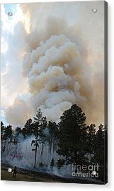Acrylic Print featuring the photograph Burnout Near Song Dog Road by Bill Gabbert
