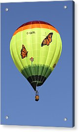 Butterflies  Acrylic Print by Mike McGlothlen