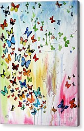 Butterflies Acrylic Print by Tom Riggs