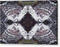 Butterfly Effect Acrylic Print by Dawn J Benko