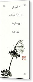 Butterfly Acrylic Print by Vlad Grigore