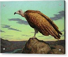 Buzzard Rock Acrylic Print by James W Johnson