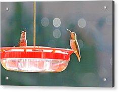 Buzzing Overhead Acrylic Print by Lynn Bauer