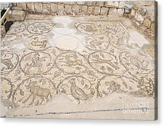 Byzantine Mosaic Depicting Animals And Hunting Scenes. Acrylic Print by Shay Levy