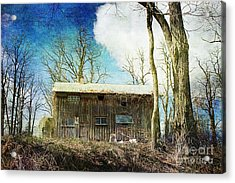 Cabin Fever Acrylic Print by A New Focus Photography