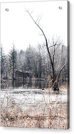 Cabin In The Woods Acrylic Print by Julie Palencia