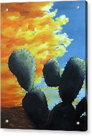 Cacti At Sunset Acrylic Print by Roseann Gilmore