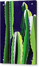 Cactus In The Desert Moonlight Acrylic Print by Karyn Robinson