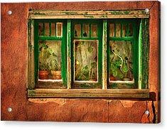 Cactus Window Acrylic Print by Keith Berr