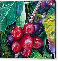 Cafe Costa Rica Acrylic Print by Carol Allen Anfinsen