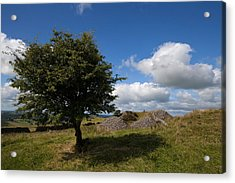Cairn D On Carbane West, Loughcrew Acrylic Print by Panoramic Images