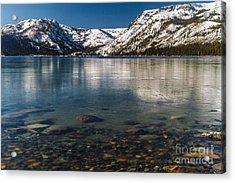 Calico Ice Acrylic Print by Mitch Shindelbower