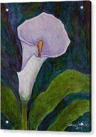 Calla Lily II Acrylic Print by Madalena Lobao-Tello