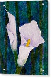 Callas Lilies II Acrylic Print by Madalena Lobao-Tello