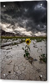 Calm Before The Storm Acrylic Print by Aaron J Groen