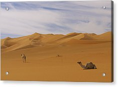 Camels Acrylic Print by Ivan Slosar