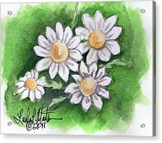 Camomile Flowers Acrylic Print by Linda L Martin