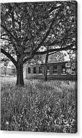Camp 30 Number 4 Acrylic Print by Steve Nelson