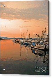 Campbell River Marina Acrylic Print by Nancy Harrison