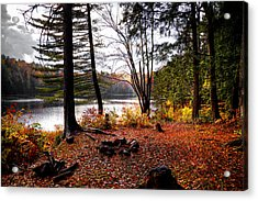 Campsite On Cary Lake Acrylic Print by David Patterson