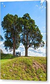 Cannon On A Hill Acrylic Print by John Bailey