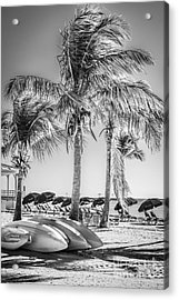 Canoes And Palms - Higgs Beach Key West - Black And White Acrylic Print by Ian Monk