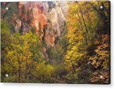Canyon Kaleidoscope  Acrylic Print by Peter Coskun